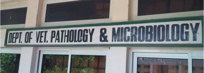 Pathology and Microbiology Logo